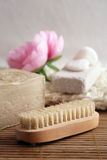 Hygiene products Royalty Free Stock Image