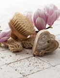 Hygiene and skin rejuvenation. Body massage with exfoliation with soft spring flowers for femininity Royalty Free Stock Image