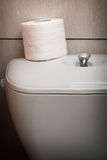 Hygienic Toilet Paper Roll in WC Royalty Free Stock Images