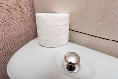 Hygienic Toilet Paper Roll in WC Royalty Free Stock Photo
