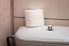 Hygienic Toilet Paper Roll in WC Royalty Free Stock Photography