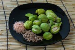 Hygrophilus Kurz d'Elaeocarpus Photos stock