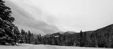 Hylite droga, Montana Zdjęcie Royalty Free