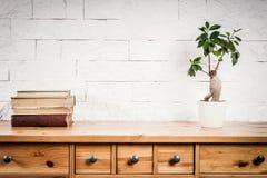 Hylla med böcker och blomman och vitväggen Arkivfoto