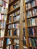 Hyllor av böcker i ett arkiv arkivbilder