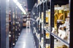Hyllor av djur som bevaras i alkoholflaskor Arkivbilder