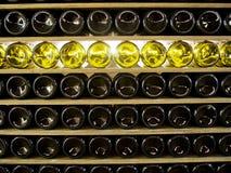 Hyllor av vinflaskor skapar modellen Royaltyfri Foto