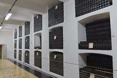 Hyllor med flaskor av vin i källaren av vinodlingen Arkivfoto