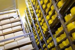 Hyllor med ost på ett ostlager fotografering för bildbyråer