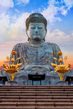 Hyogo Daibutsu - The Great Buddha at Nofukuji Temple in Kobe Stock Photo