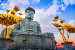 Hyogo Daibutsu - The Great Buddha at Nofukuji Temple in Kobe Stock Image