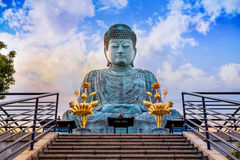 Hyogo Daibutsu at Nofukuji Temple in Kobe Royalty Free Stock Image