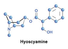 Hyoscyamine is a tropane alkaloid. It is a secondary metabolite found in certain plants of the family Solanaceae Royalty Free Stock Images