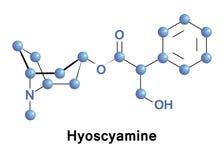 Hyoscyamine is a tropane alkaloid Royalty Free Stock Images