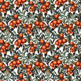 Hyper-realistic watercolor oranges seamless pattern royalty free illustration