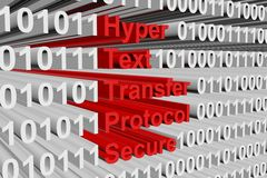 Hyper Text Transfer Protocol Secure. In the form of binary code, 3D illustration Royalty Free Stock Images