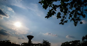 Hyper Time lapse shot of evening sky. Look up through tree canopy stock video footage