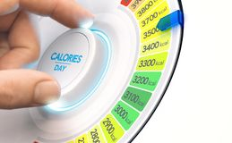Hypercaloric diet, high calories plan Stock Photography
