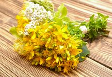 Hypericum flowers and yarrow flowers Stock Photo