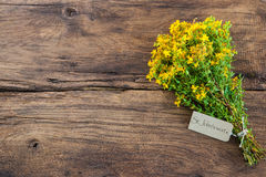 Hypericum perforatum or St john's wort. With a tag on wooden background Royalty Free Stock Photo