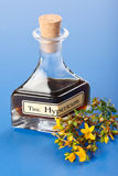 Hypericum plant and extract Stock Images