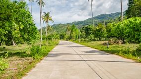 Hyperlapse управлять вдоль тропической улицы с пальмами в Таиланде Первая перспектива POV человека видеоматериал