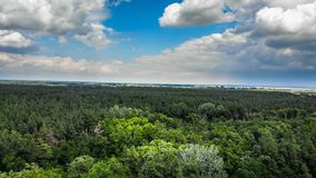 Hyperlapse Aerial view over Green Forest with Moving Clouds in Blue Sky stock footage
