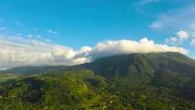 Mountains covered with rainforest and clouds, timelapse. stock footage
