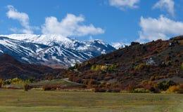 Hypnotisera Colorado berg i höst Fotografering för Bildbyråer