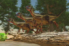 Hypsilophodon Dinosaurs Stock Photo