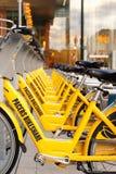 Hyra cyklar i rad Arkivfoton