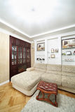 Hyra rum med soffan, träbokhylla med spisen Arkivfoton