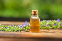 Hyssop essential oil in beautiful bottle on table. Hyssop essential oil in a beautiful bottle on the table royalty free stock image