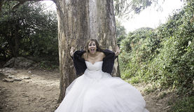 Hysterical and nervous bride Stock Image