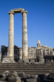 Hystorical column of Apollo ancient city in Didyma Turkey Stock Images