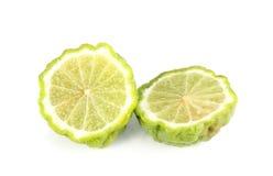 Hystrix dell'agrume, fondo di bianco del bergamotto Fotografia Stock Libera da Diritti