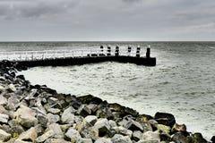 Hytt på Afsluitdijken Arkivfoton