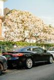 Hyunday Grandeur Azera under magnolia tree. STRASBOURG, FRANCE - MAR 3, 2017: Luxury Hyunday Azera or Hyundai Grandeur parked on a city street under magnolia Royalty Free Stock Photography
