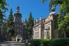 IÅ 'owa pałac kompleks Obrazy Stock