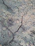 IŁ ziemia Z właściwościami glina, namuł, piasek I czarnoziemy, zdjęcie royalty free