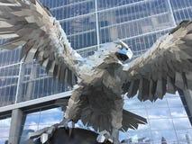 IŚĆ falcons! zdjęcia royalty free