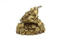 Iść na piechotę Chiński pieniądze toad_01 Fotografia Royalty Free