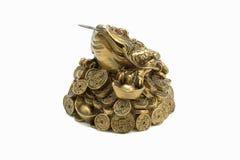 Iść na piechotę Chiński pieniądze toad_02 Fotografia Royalty Free