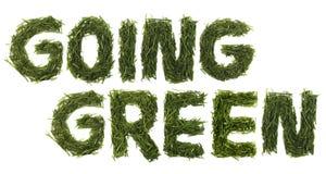 Iść Zielona trawa Obrazy Royalty Free