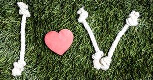 I и v письма и 3 бумажных выхода отрезка сердца на траве Стоковое Фото