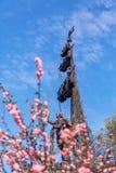 i памятник peter к blossoming миндалин Парк Museon Стоковые Изображения