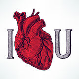 I сердце вы Стоковое фото RF