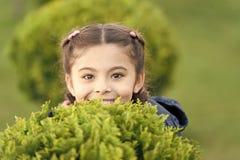 i 女孩逗人喜爱的微笑的孩子绿草背景 ( ?? 库存照片