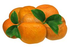Tangerines with leaves isolated on a white background. No shadow. Excellent quality.