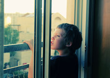 I 7 anni svegli del ragazzo guarda fuori la finestra Fotografie Stock
